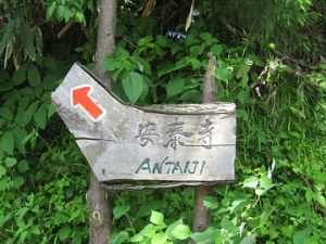 池ヶ平口(いけがなるぐち)バス停。ここから安泰寺まで山道(4km)が続きます