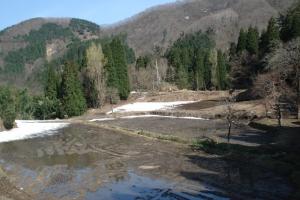 album_tanbo_2011_2012_00400