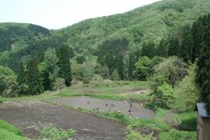 album_tanbo_2011_2012_00500