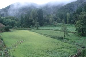 album_tanbo_2011_2012_00800